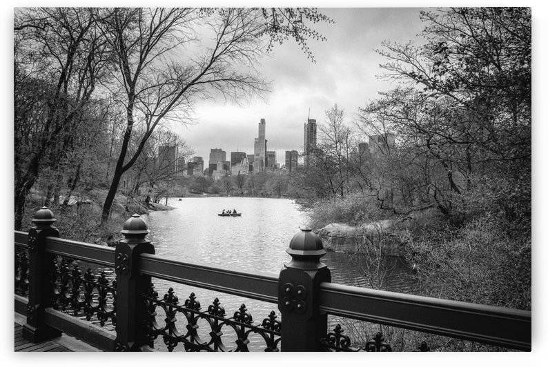 Central Park by Billy Johnson