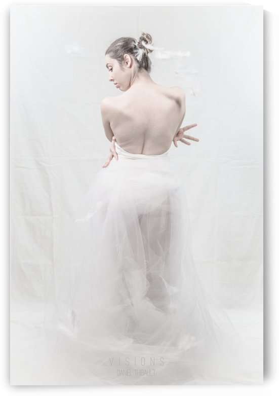 Le cygne 3 by Daniel Thibault artiste-photographe