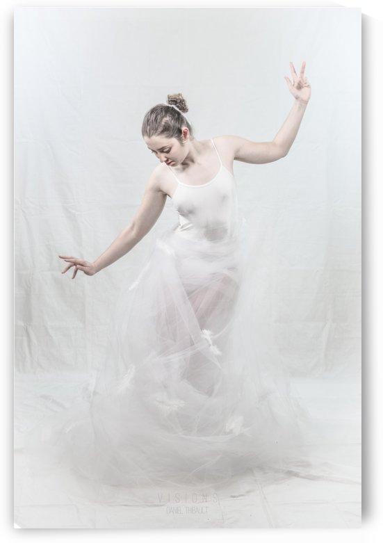 Le cygne 4 by Daniel Thibault artiste-photographe