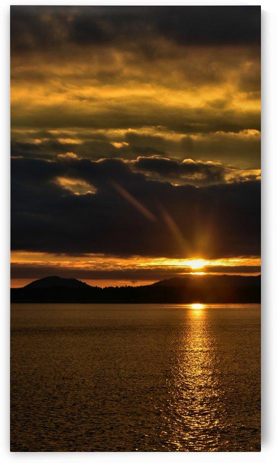 Good morning sunshine by Violet Carroll