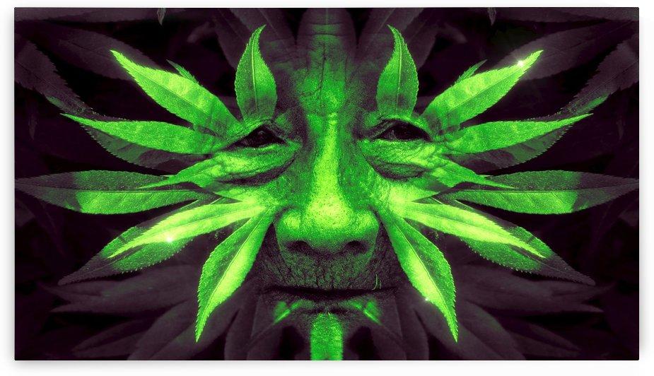 weed by design4u