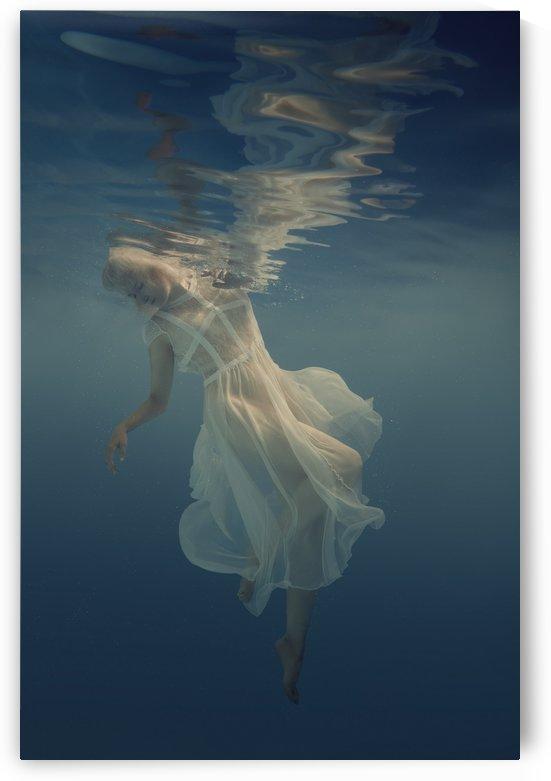 Beautiful lightness by Dmiry Laudin