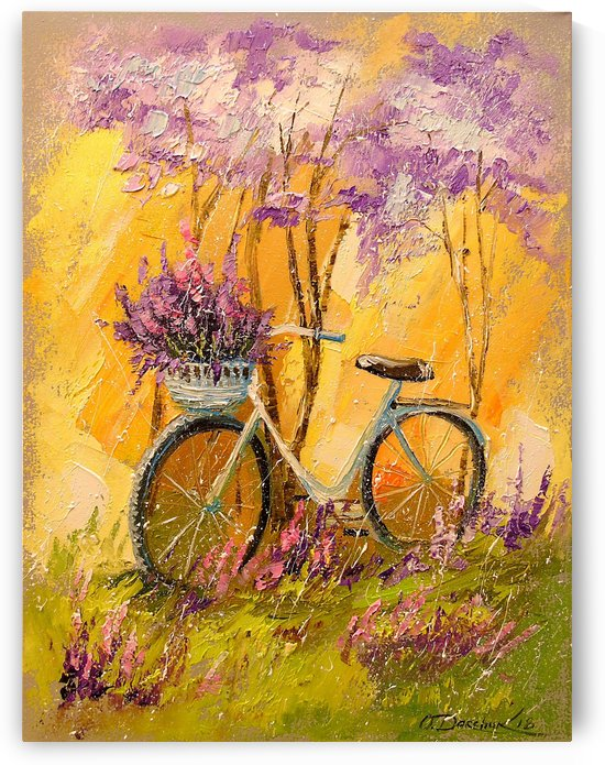 My bicycle by Olha Darchuk