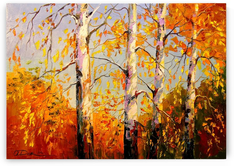 Birch by Olha Darchuk