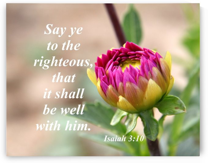 Say ye to the righteous by Edifying Designs
