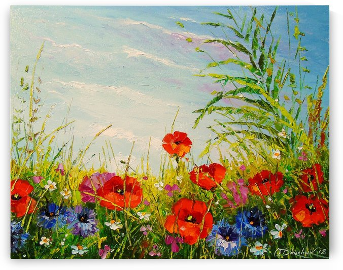 The field of flowers by Olha Darchuk