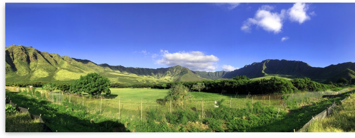 Makua by Asia Visions Photography