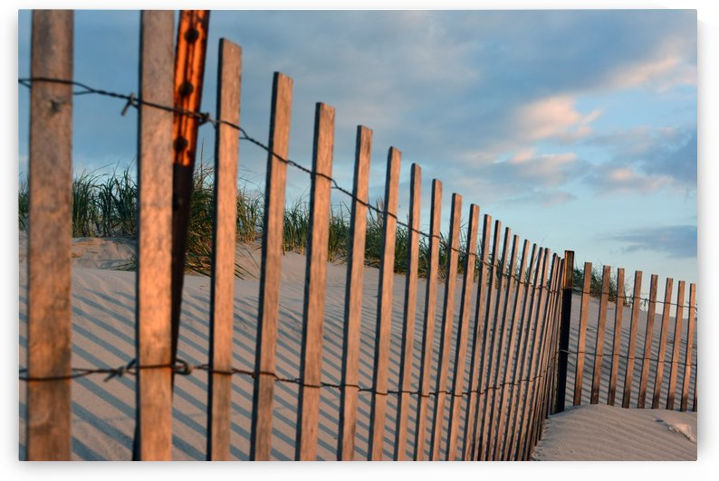 shore fence 10 by Shore Shots by Jerry Hussar