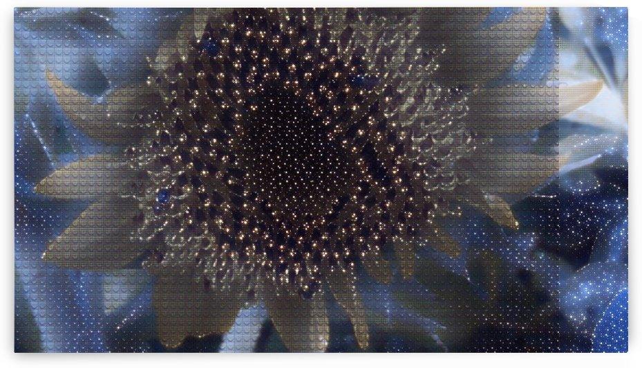 Digital art in flower by Nilu Mishra
