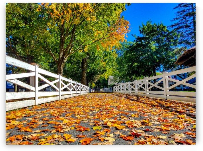 Fall 2018 Saratoga Race Track New York By Terri Phillips Mierkey by Terri Mierkey