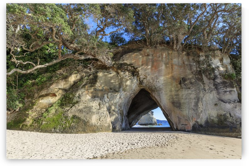 cathedral cove entrance by Alex Galiano