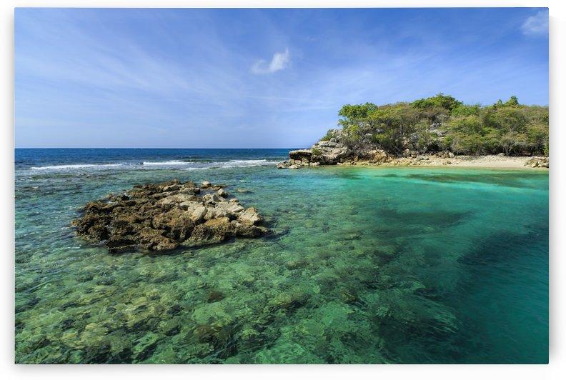 Caribbean Beach by Alex Galiano