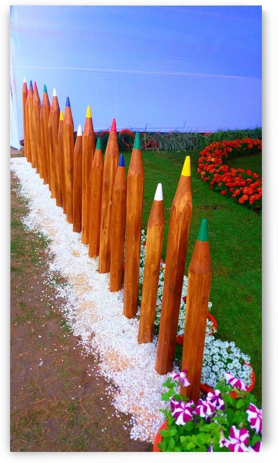 Colorful pencils by Nilu Mishra