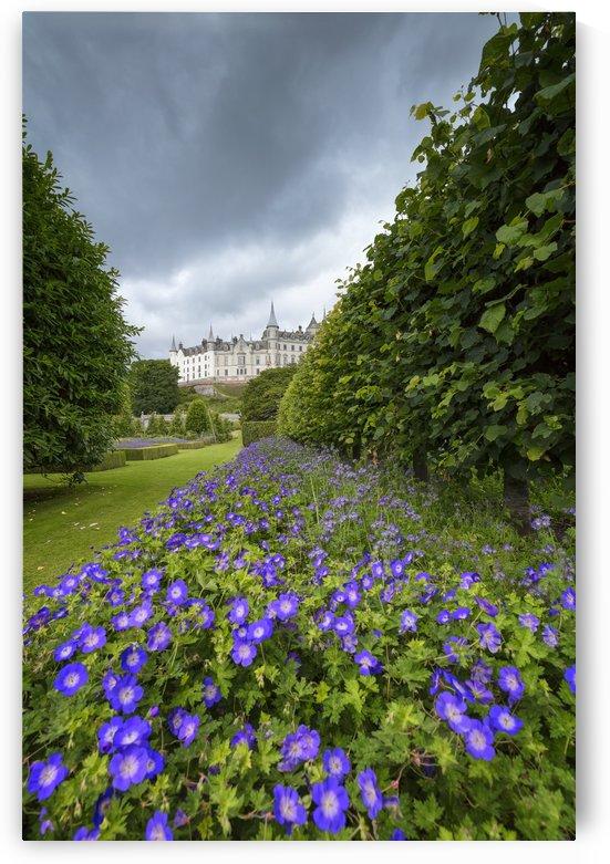 Dunrobin Castle by Alex Galiano