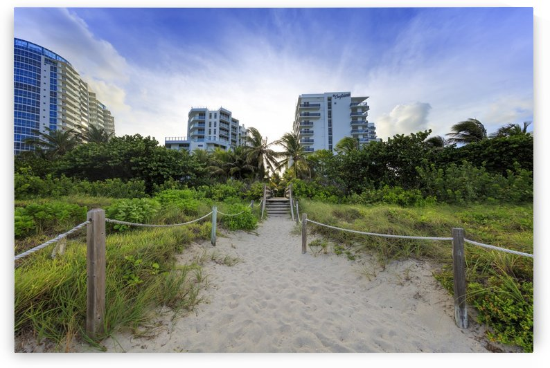 Miami Beach by Alex Galiano