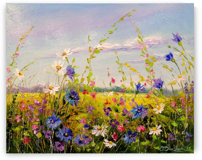 Flowers in the field by Olha Darchuk
