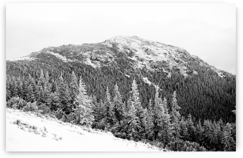Winter by Attila R  Kovacs