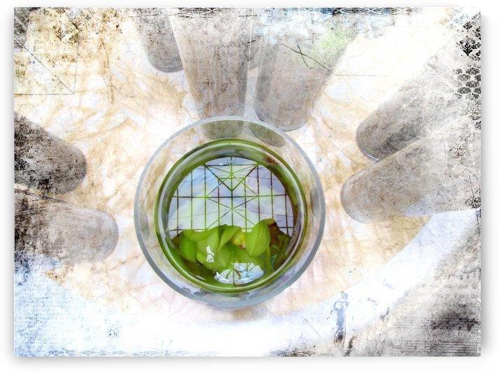 Deep Calls into Deep by Olga Osi