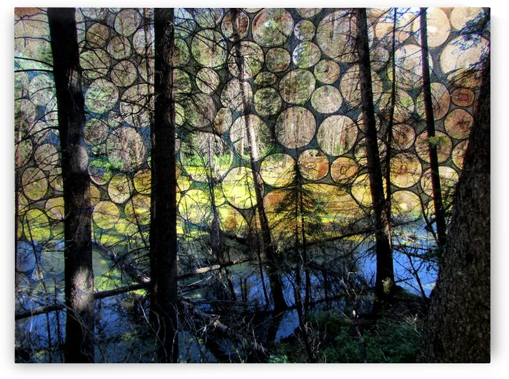 Wooden Pattern by Olga Osi