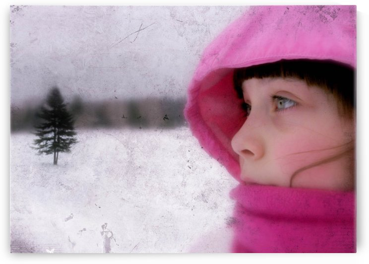 Winter pink by Olga Osi