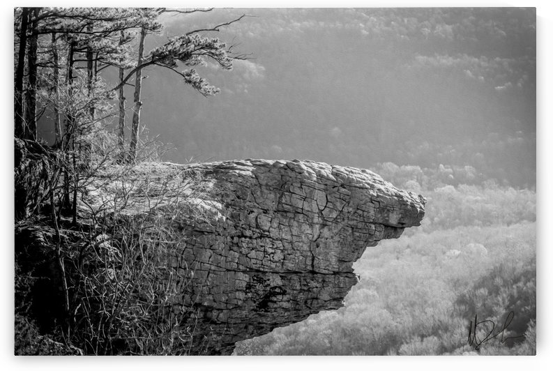 Whitaker Point by Michael Firsich Photography