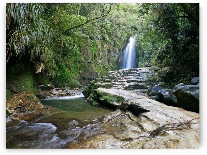Kaiate Falls by Suzanne Atkin