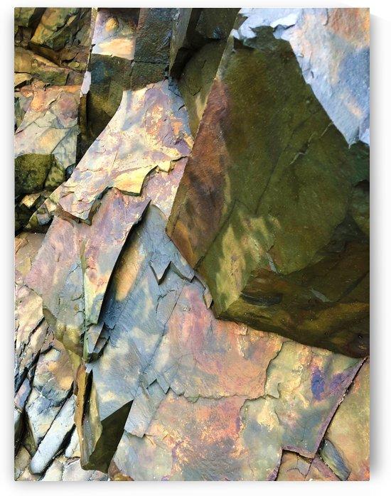 Colorful Slate by Senthia Sanders