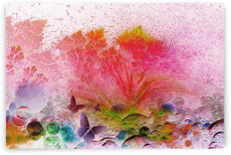 soft wind 6 by khaled Aljaber