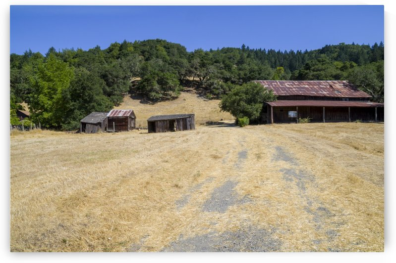 _Abandoned ranch in Sonoma County by Bob Corson