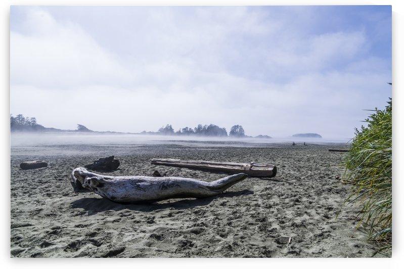Driftwood on Chesterman Beach by Bob Corson