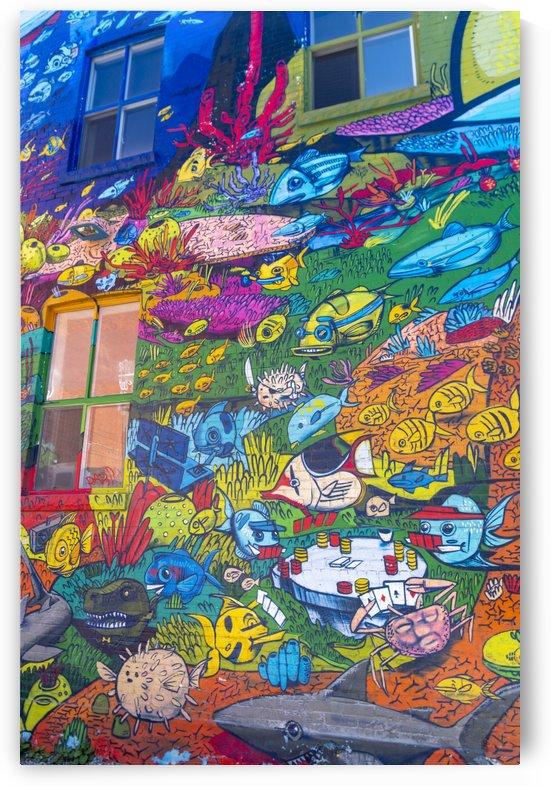 Torontos Graffiti Alley  15 by Bob Corson