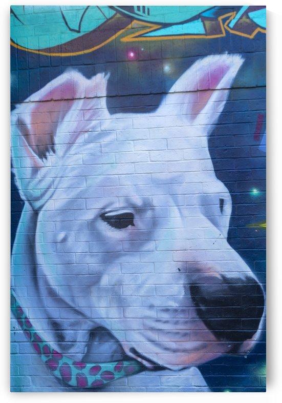 Torontos Graffiti Alley  2 by Bob Corson