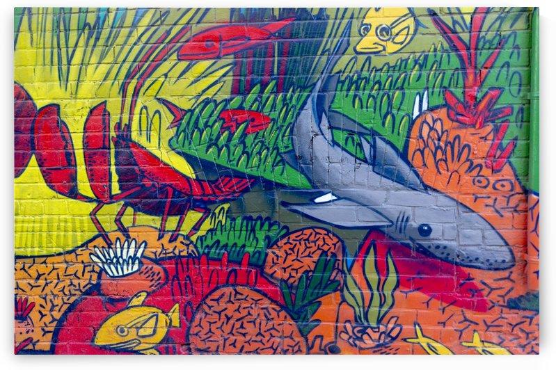 Torontos Graffiti Alley 19 by Bob Corson
