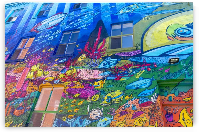 Torontos Graffiti Alley  16 by Bob Corson