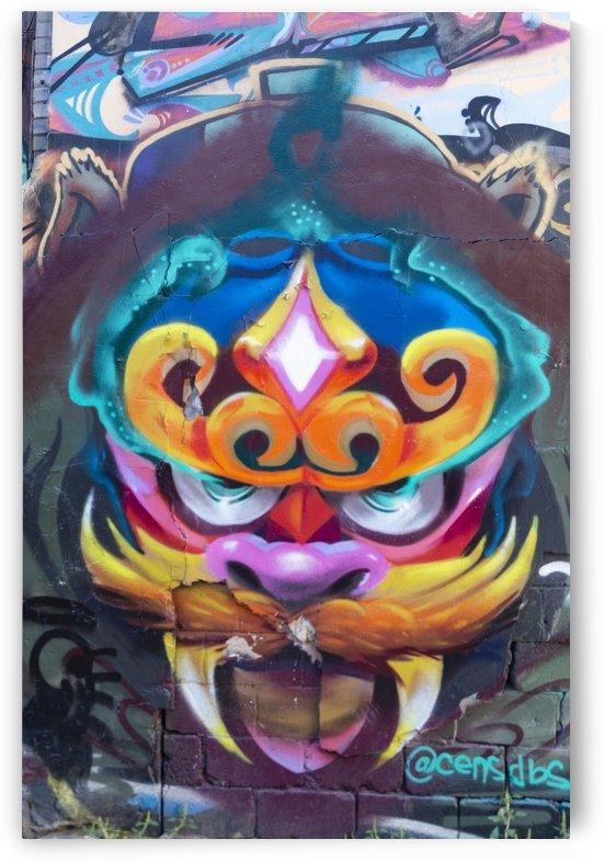 Torontos Graffiti Alley  41 by Bob Corson