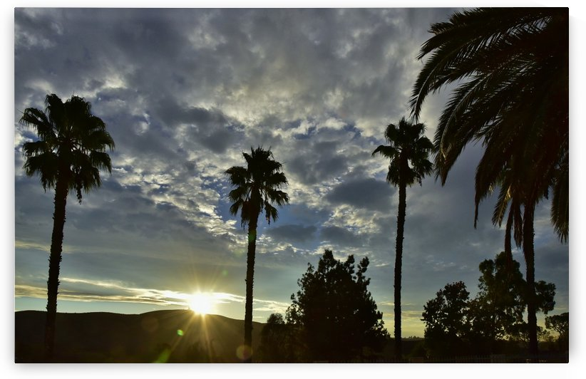 A New Day Dawning 3 by Linda Brody