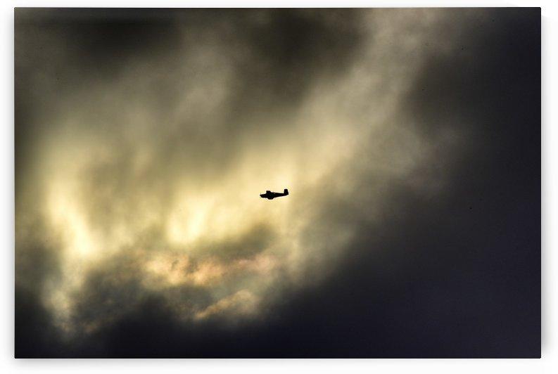 A Sunday Morning Flight 1 by Linda Brody