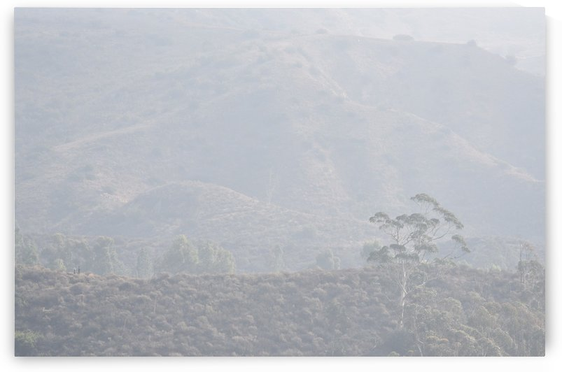 Hikers in the Fog. by Linda Brody