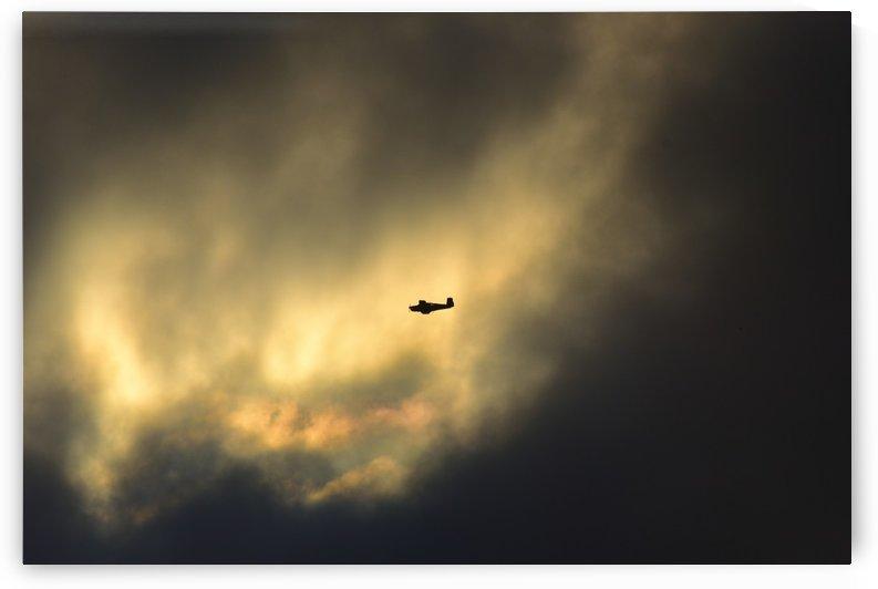 A Sunday Morning Flight 2 by Linda Brody