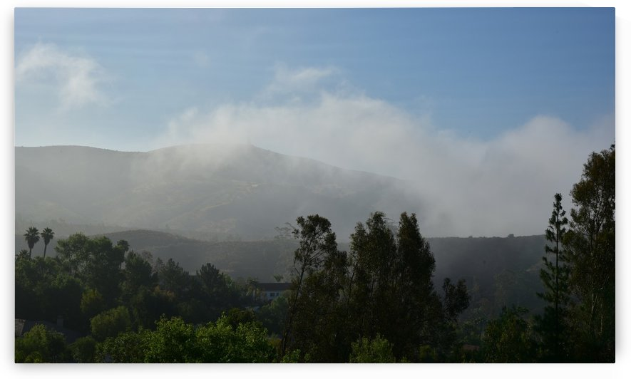 Late Morning Fog Lifting by Linda Brody