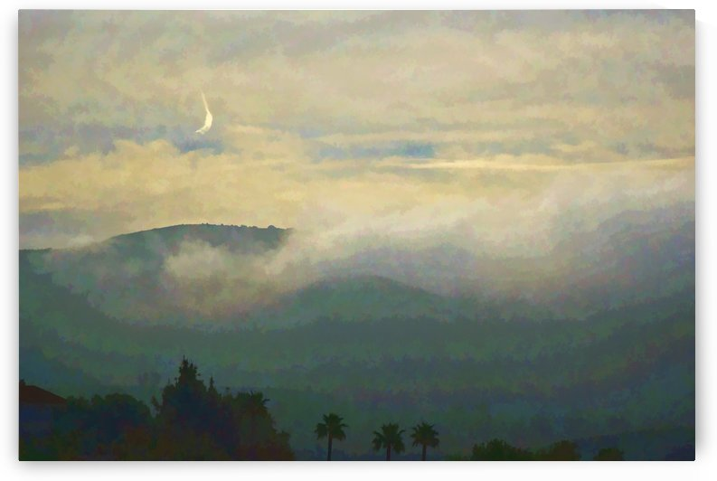 Fog Bank in the Morning Painterly I by Linda Brody