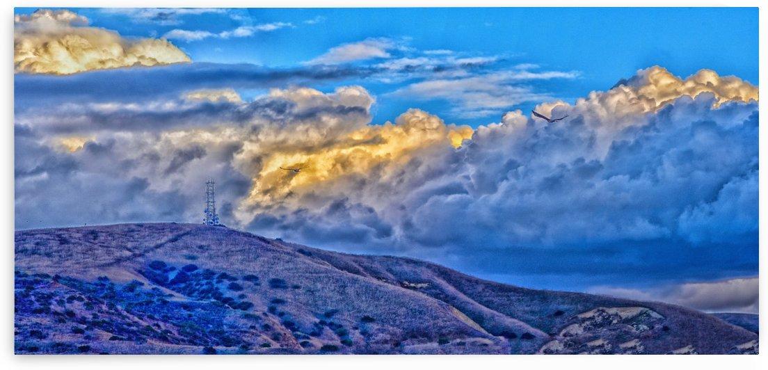 Blue Dawn Panorama 2 by Linda Brody