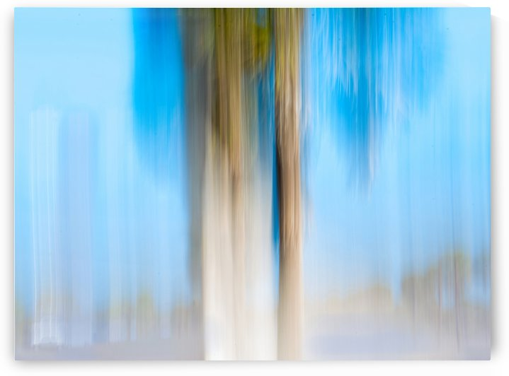 Moving Trees 13 Landscape 52 70 200px by Gene Norris