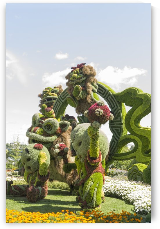 IFrom Shanghai: Joyful Celebration of the Nine Lions  by Bob Corson