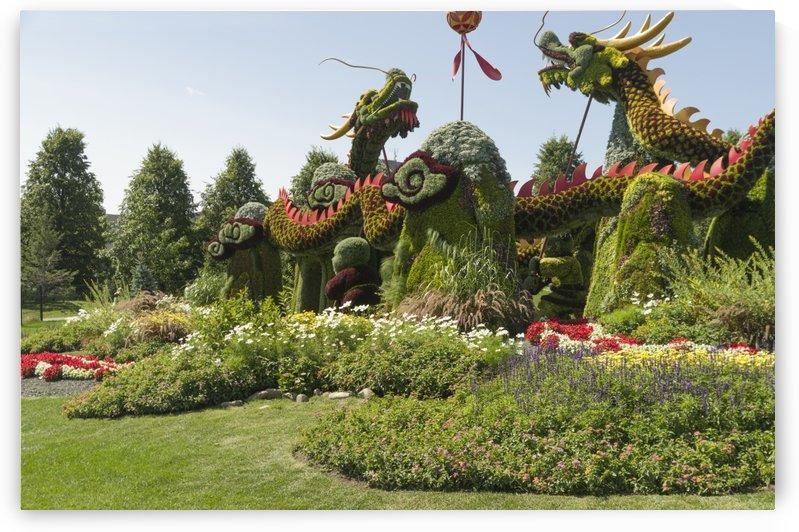 From Shanghai: Joyful Celebration of the Nine Lions  by Bob Corson