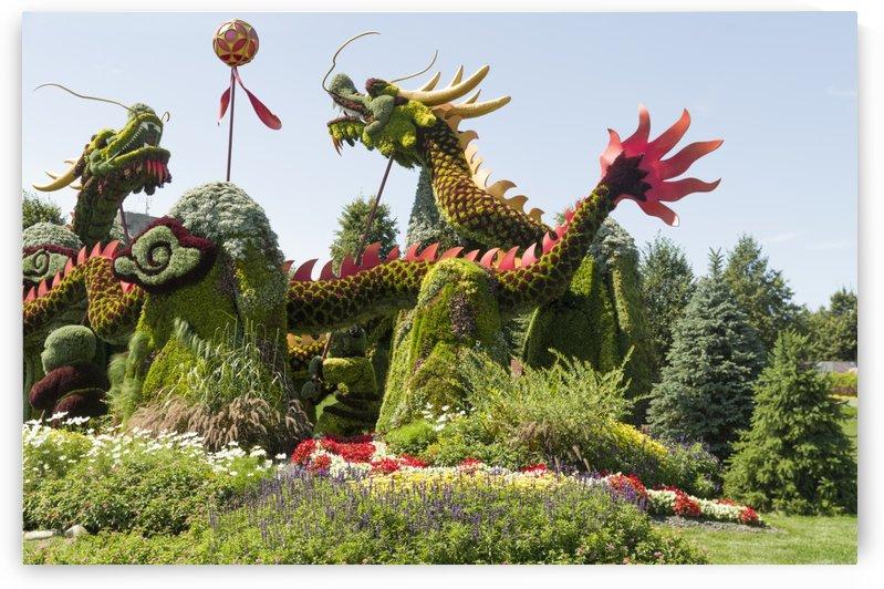 From Shanghai: Joyful Celebration of the Nine Lions 7 by Bob Corson