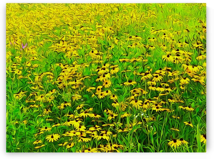 Field Of Flowers by Impression Of Things