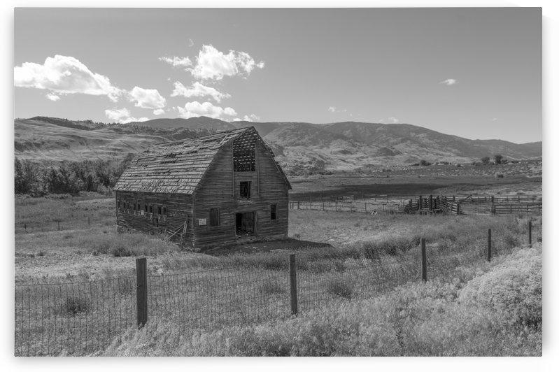 Derelict barn on John Carmichael Haynes homestead Oliver BC B&W by Bob Corson