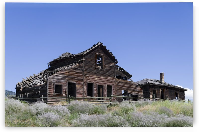 John Carmichael Haynes homestead Oliver BC by Bob Corson
