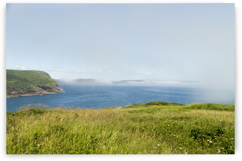 View from Cape Spear Walking trails 10 by Bob Corson